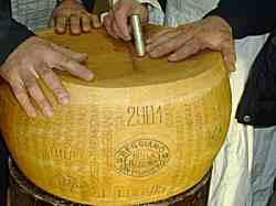 Mani su Forma Parmigiano Reggiano